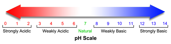 الرقم الهيدروجيني pH number