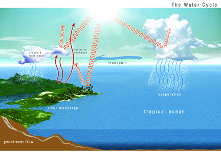 water cycle3