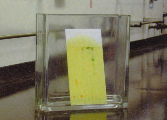 Thin layer chromatoghraphy
