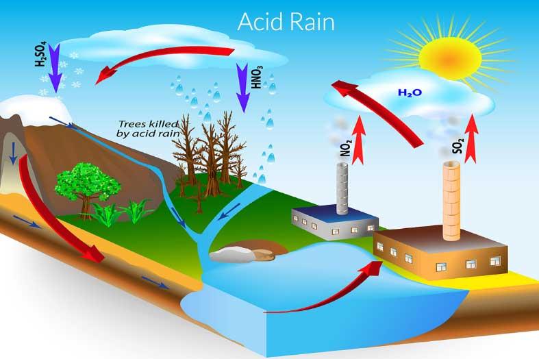 المطر الحمضي و تلوث البيئة acid rain