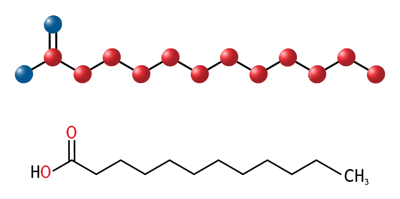 حمض اللوريك (حمض الغار) Lauric acid