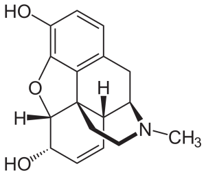 المورفين Morphine