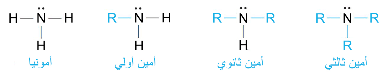 الأمينات و مركبات النيتروجين المتعلقة بها Amines and Related Nitrogen Compounds
