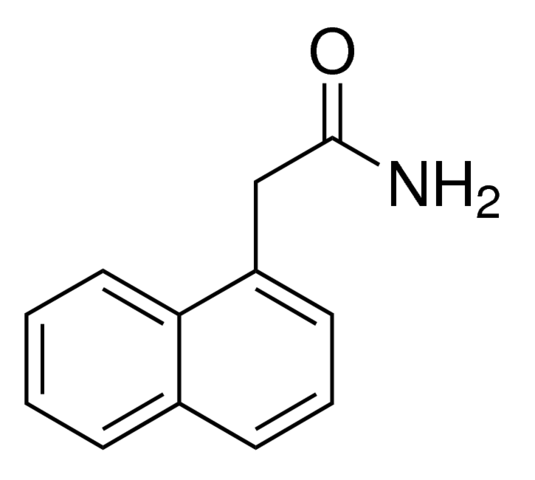 1-نفثالين أسيتاميد Naphthaleneacetamide
