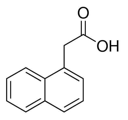 نفثالين حمض الخليك Naphthaleneacetic Acid