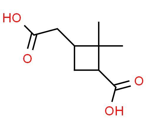حمض البينيك Pinic Acid